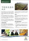 Thumbnail Forestry Chinese