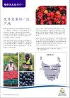 Berries flyer Chinese